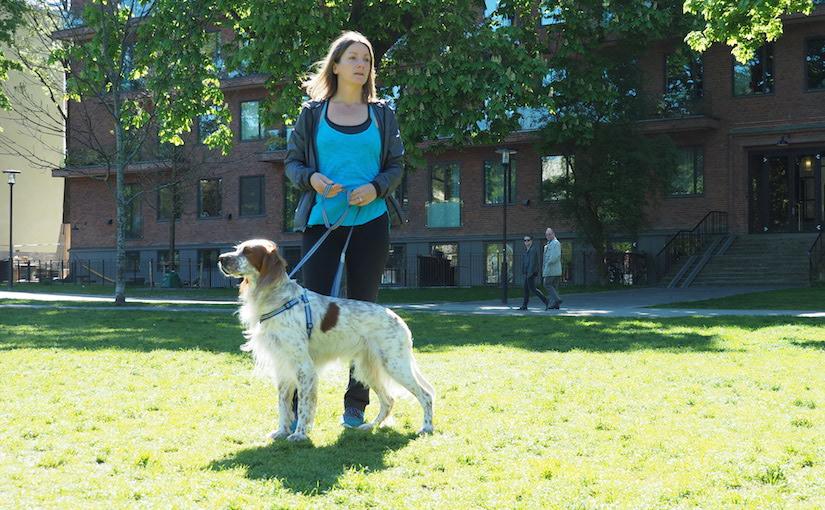 Hundpsykolog Kicki Fellstenius och certifierad diplomathund Oskar.