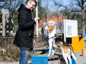 Mari och Tage visar Dogparkour för Glada Jyckar