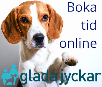 Boka tid online
