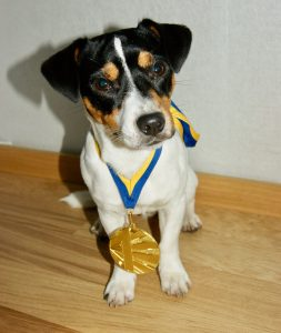 Ziggy poserar i sin guldmedalj