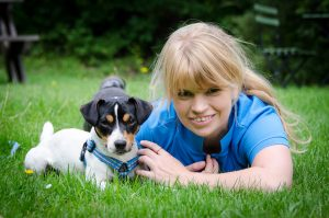 Jack Russell terriern Ziggy med Rebecca Rudhe