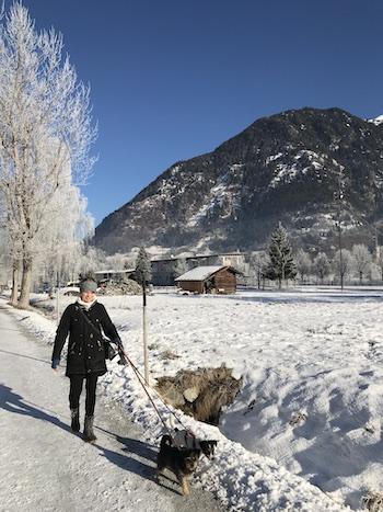 Jag, Zorro och Ziggy på promenad i Alperna
